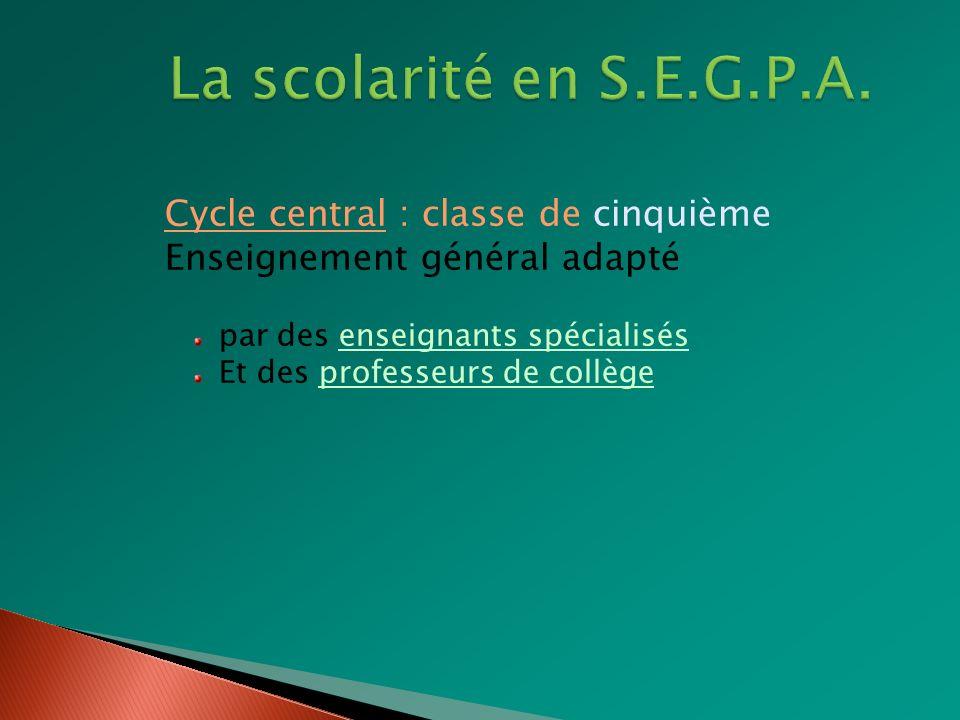 La scolarité en S.E.G.P.A. Cycle central : classe de cinquième