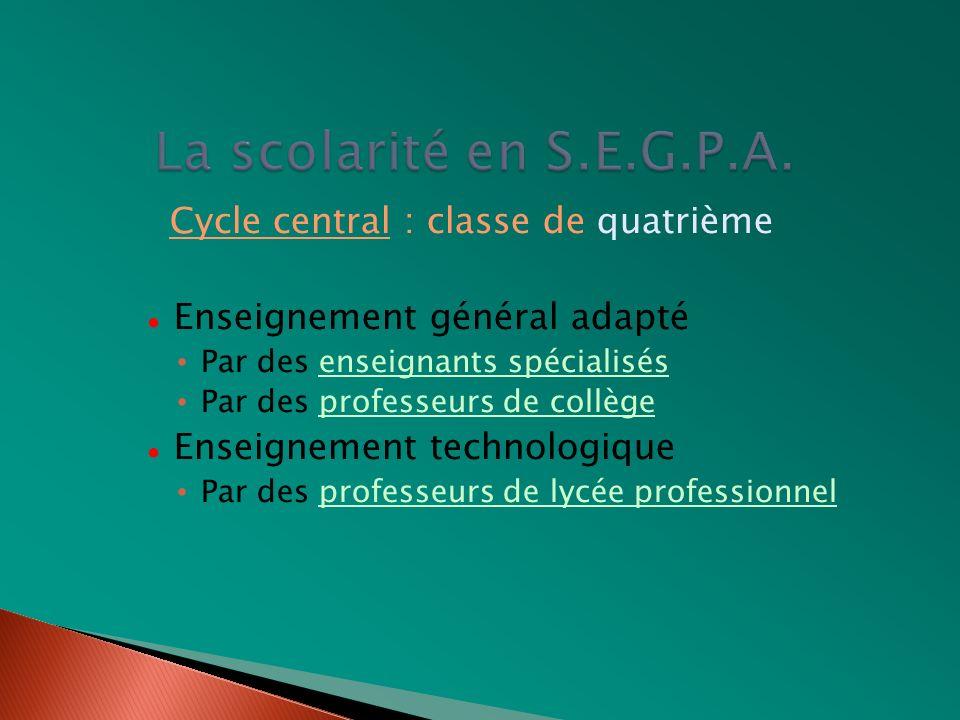 La scolarité en S.E.G.P.A. Cycle central : classe de quatrième