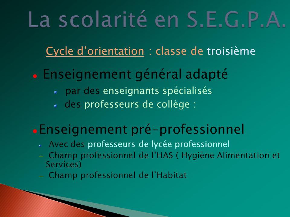 La scolarité en S.E.G.P.A. Enseignement général adapté