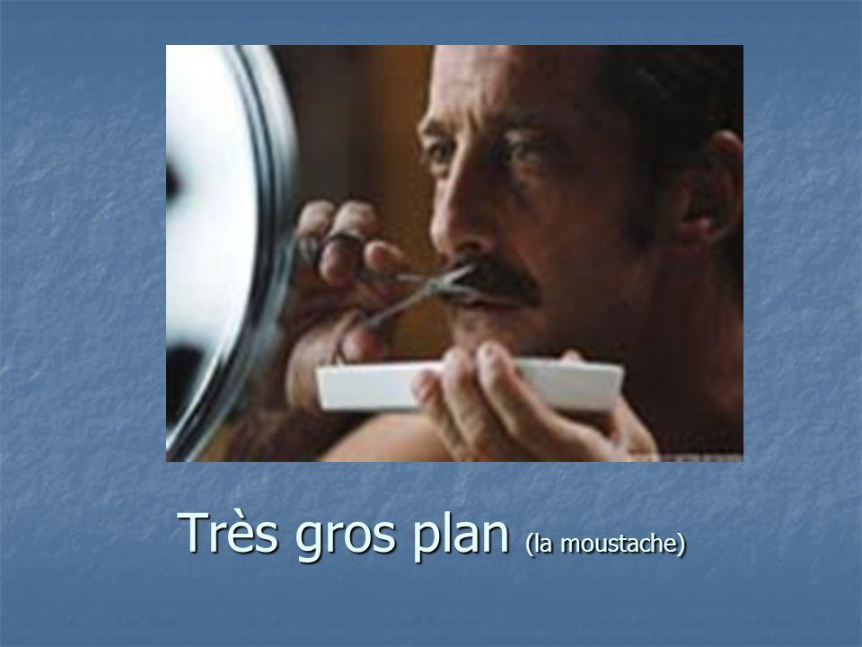 Très gros plan (la moustache)