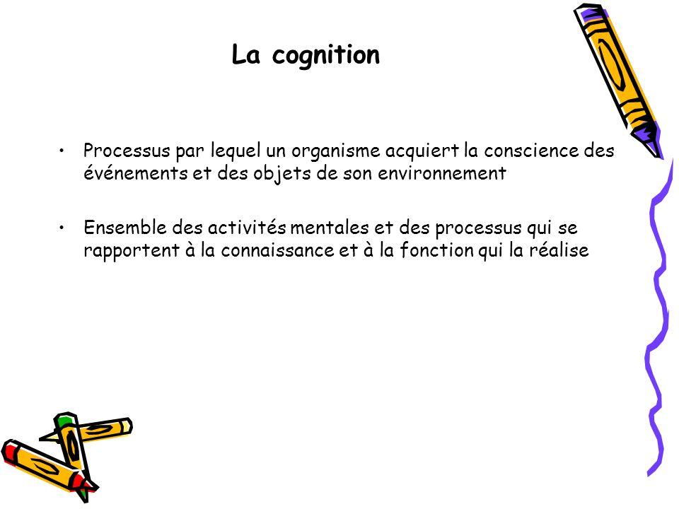 La cognitionProcessus par lequel un organisme acquiert la conscience des événements et des objets de son environnement.