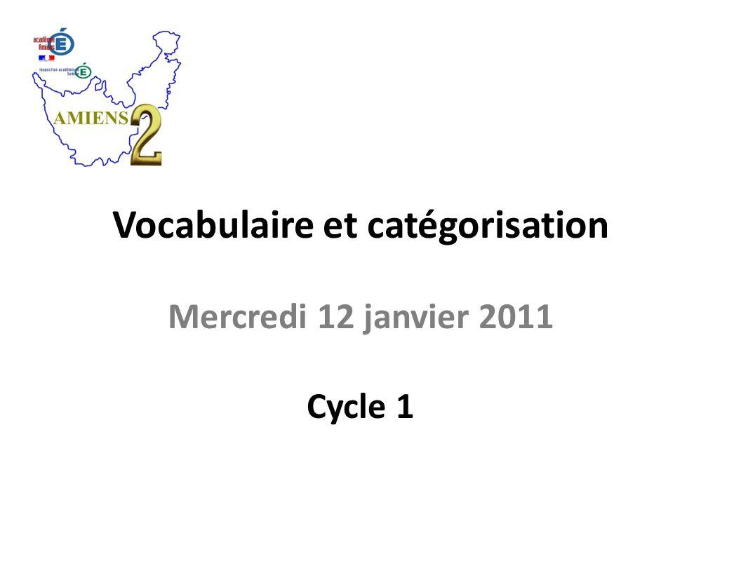 Vocabulaire et catégorisation