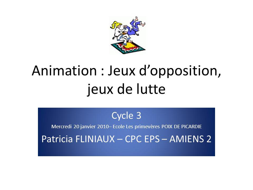 Animation : Jeux d'opposition, jeux de lutte