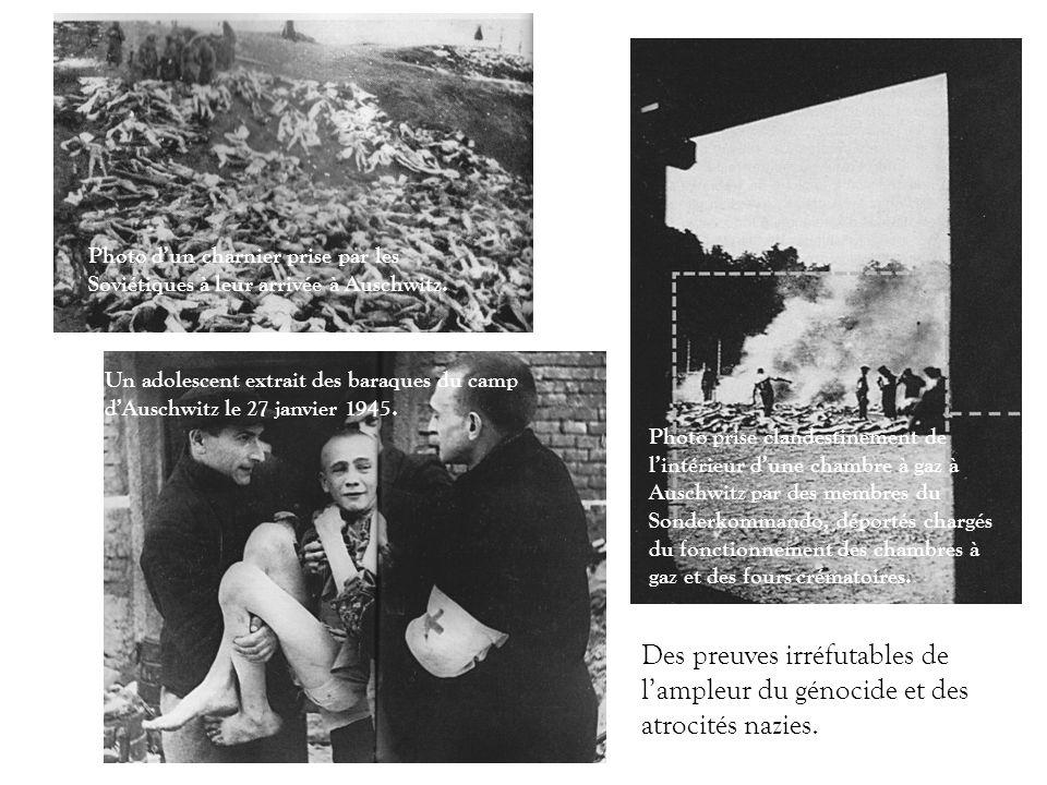 Photo d'un charnier prise par les Soviétiques à leur arrivée à Auschwitz.