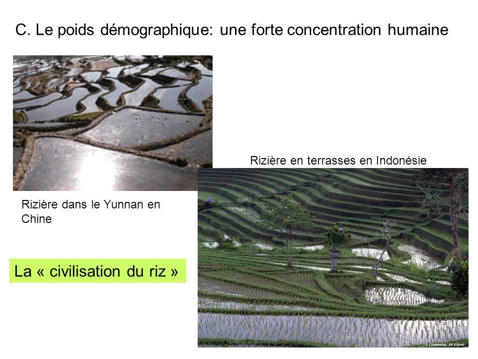 C. Le poids démographique: une forte concentration humaine