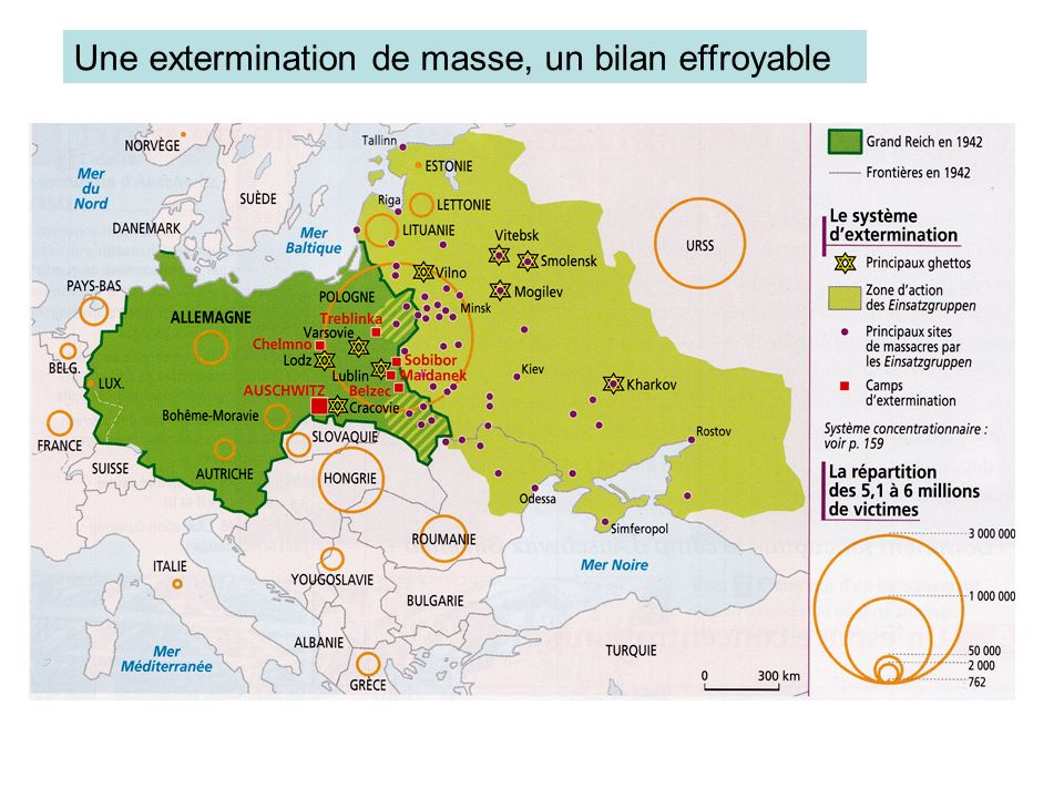 Une extermination de masse, un bilan effroyable