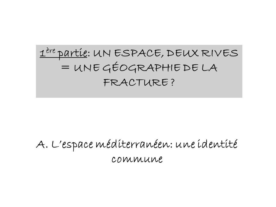 1ère partie: UN ESPACE, DEUX RIVES = UNE GÉOGRAPHIE DE LA FRACTURE