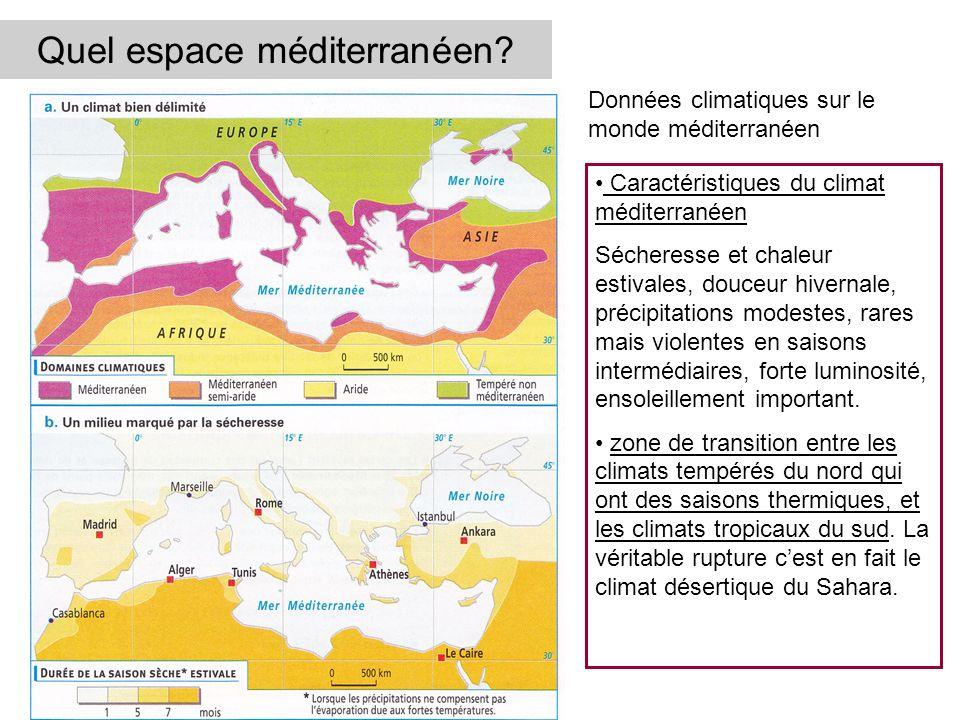 Quel espace méditerranéen
