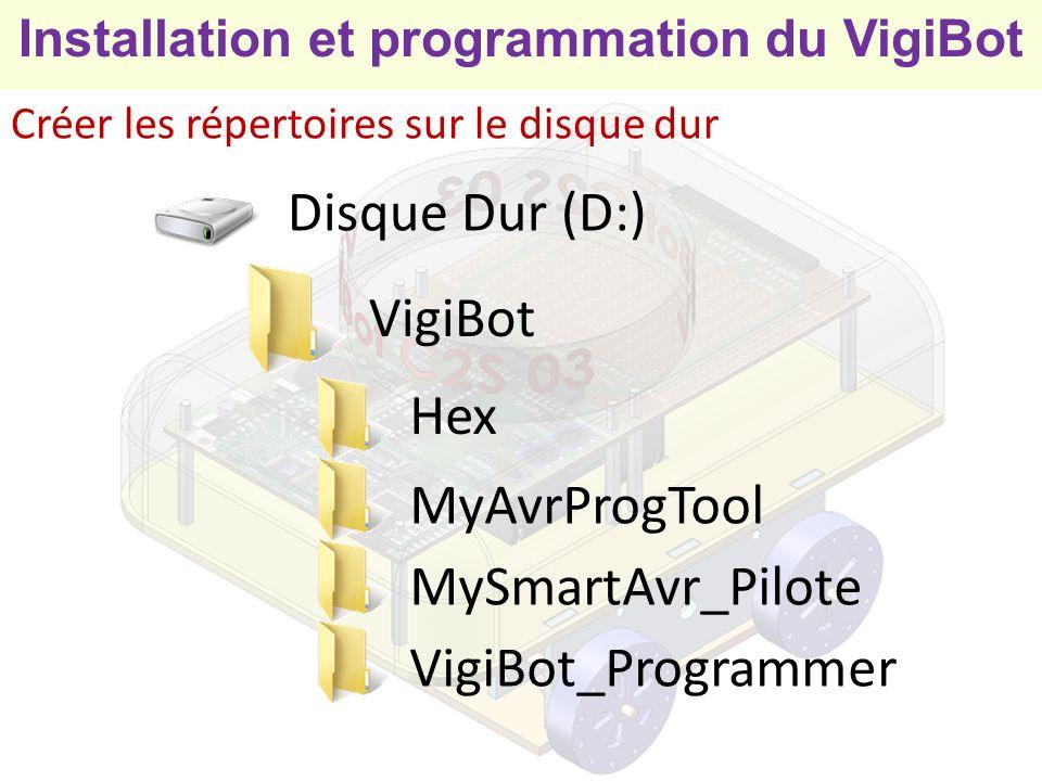 Disque Dur (D:) VigiBot Hex MyAvrProgTool MySmartAvr_Pilote