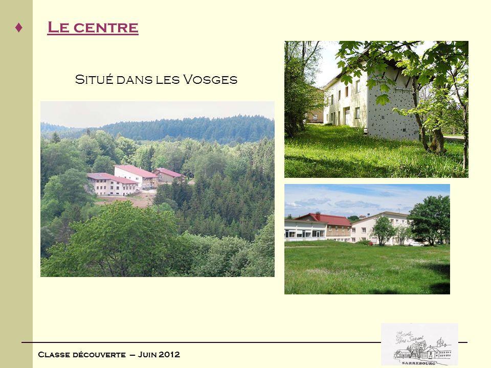 Situé dans les Vosges