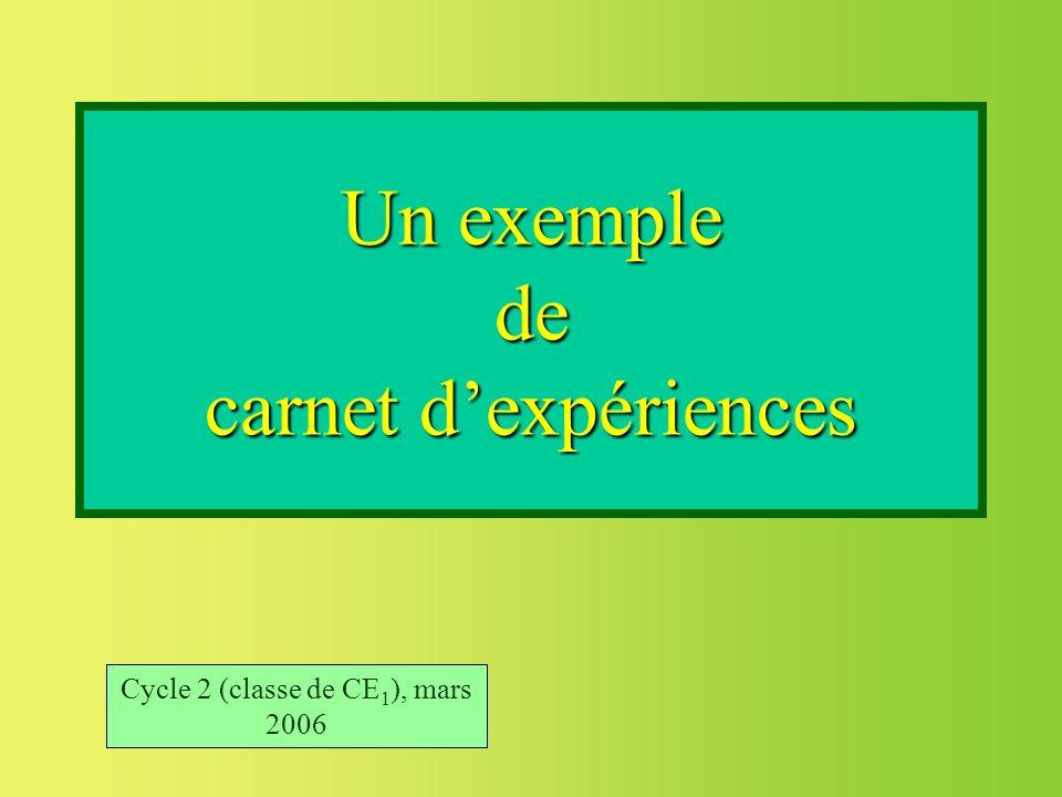 Un exemple de carnet d'expériences