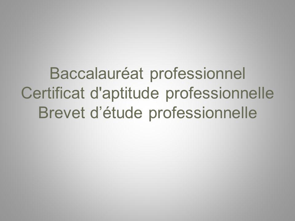 Baccalauréat professionnel Certificat d aptitude professionnelle Brevet d'étude professionnelle