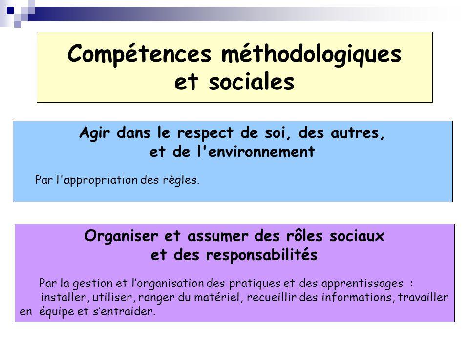 Compétences méthodologiques et sociales