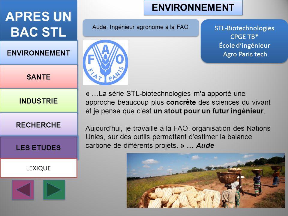 Aude, Ingénieur agronome à la FAO