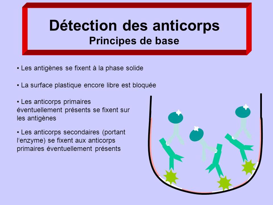 Détection des anticorps Principes de base