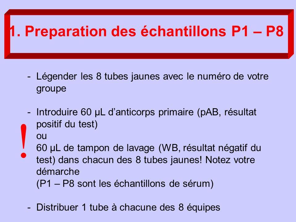 1. Preparation des échantillons P1 – P8