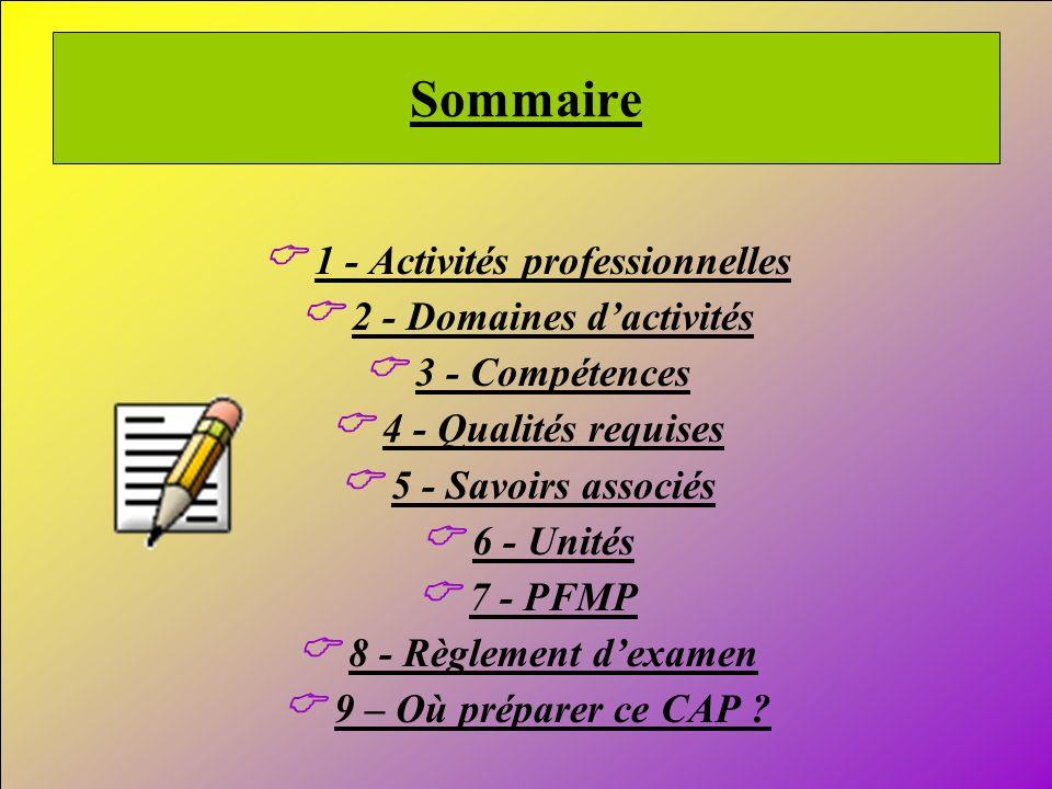 C 1 - Activités professionnelles C 2 - Domaines d'activités