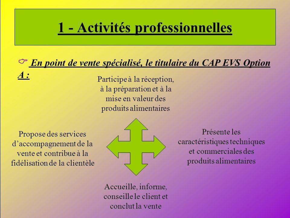 1 - Activités professionnelles