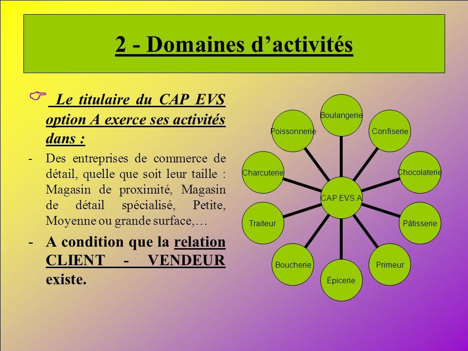 2 - Domaines d'activités