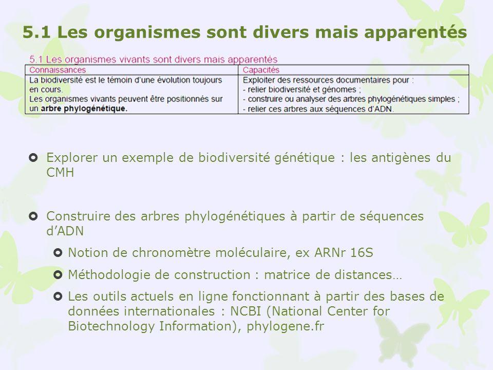 5.1 Les organismes sont divers mais apparentés