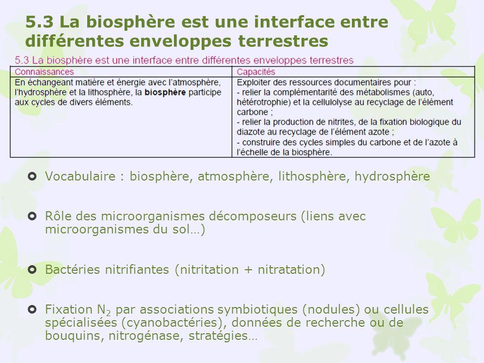 5.3 La biosphère est une interface entre différentes enveloppes terrestres