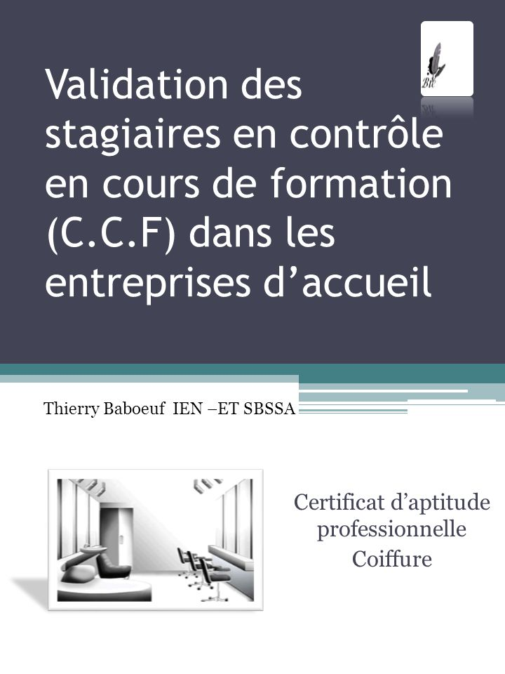 Certificat d'aptitude professionnelle Coiffure