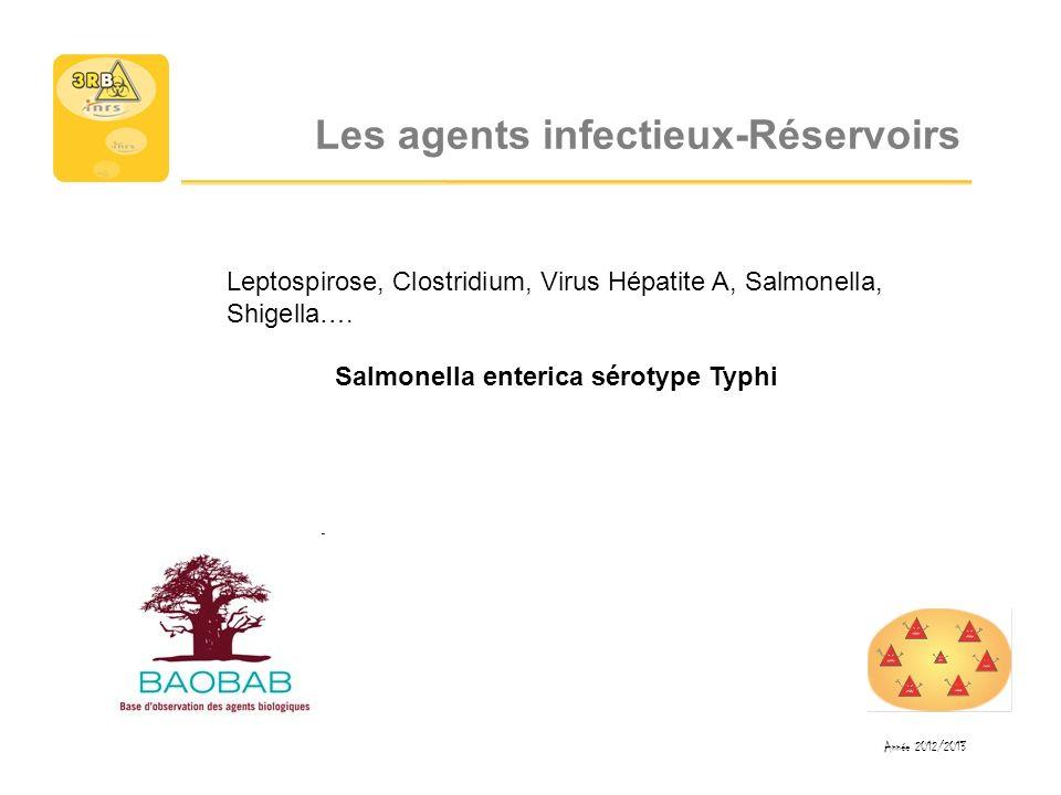 Les agents infectieux-Réservoirs