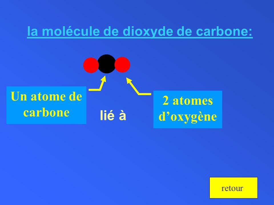 la molécule de dioxyde de carbone: