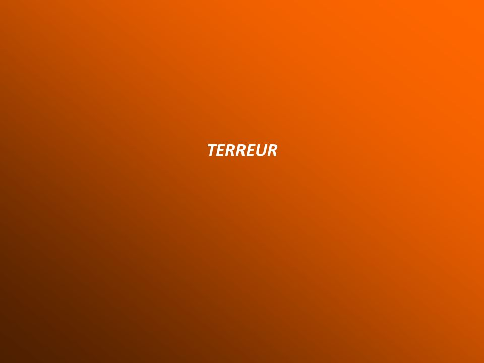 TERREUR