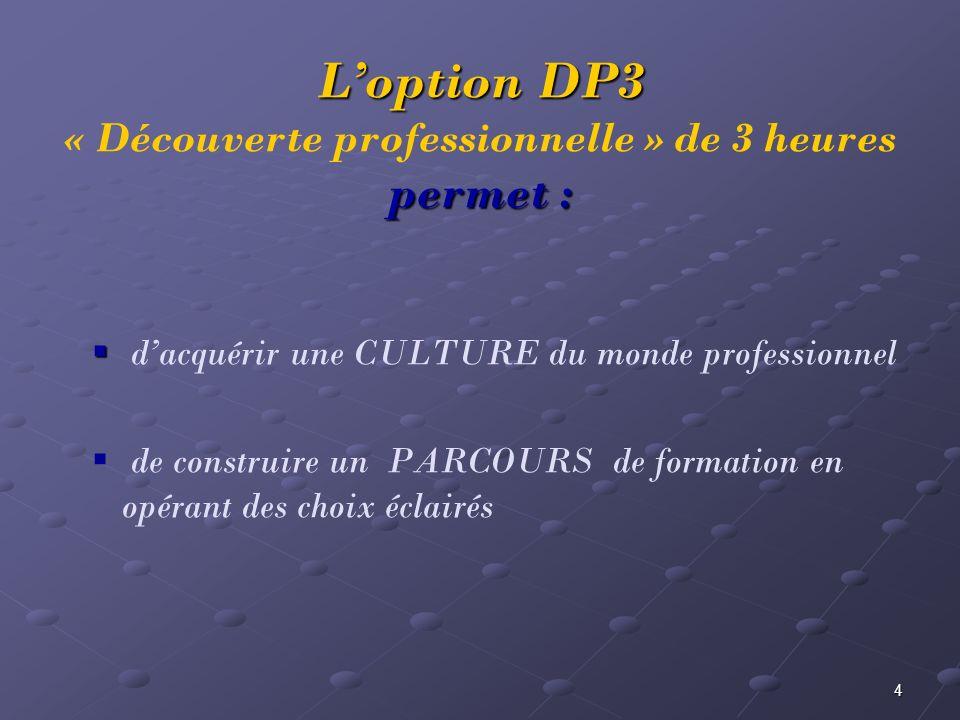 L'option DP3 « Découverte professionnelle » de 3 heures permet :