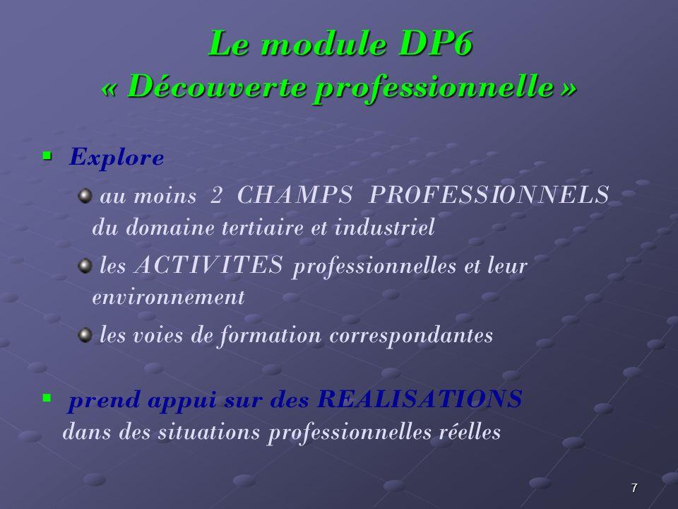 Le module DP6 « Découverte professionnelle »