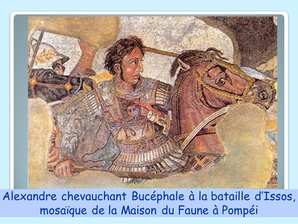 Alexandre chevauchant Bucéphale à la bataille d'Issos,