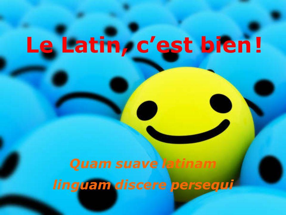 Quam suave latinam linguam discere persequi