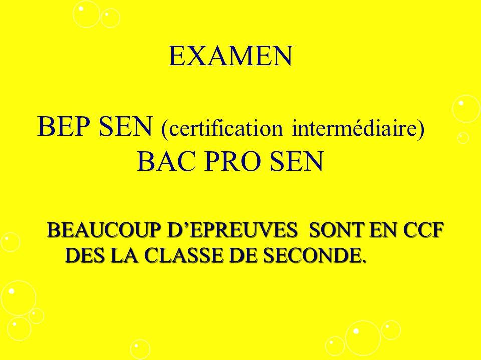 EXAMEN BEP SEN (certification intermédiaire) BAC PRO SEN