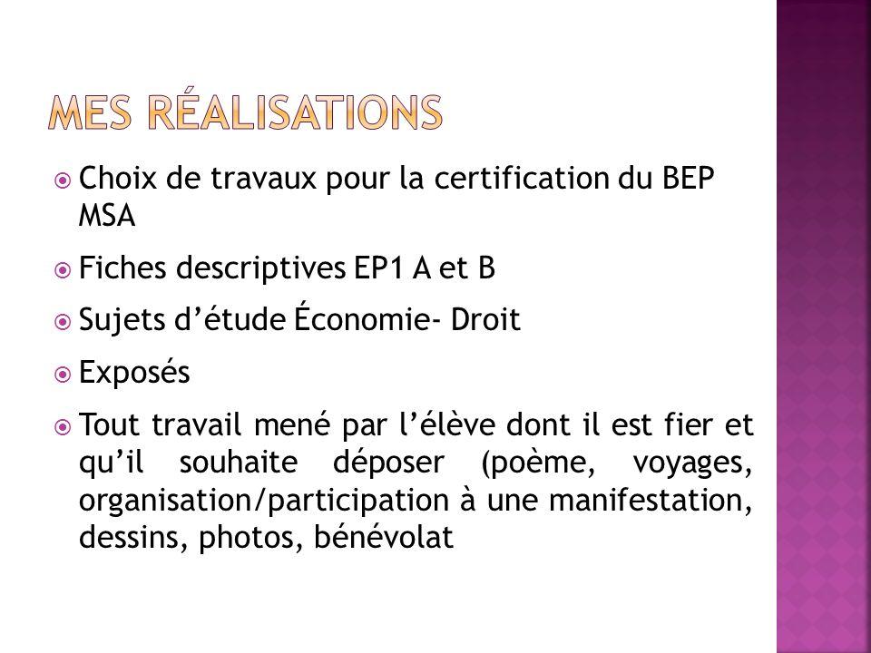 MES Réalisations Choix de travaux pour la certification du BEP MSA