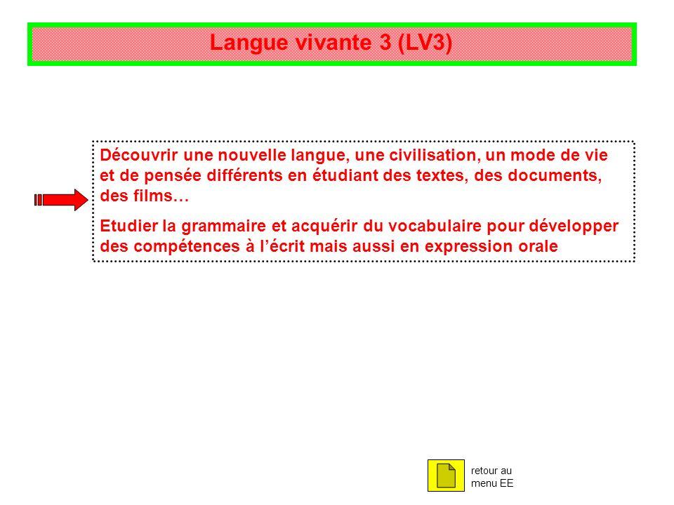 Langue vivante 3 (LV3)