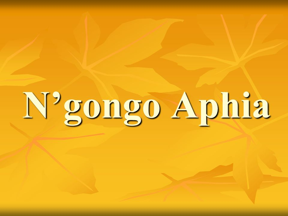 N'gongo Aphia