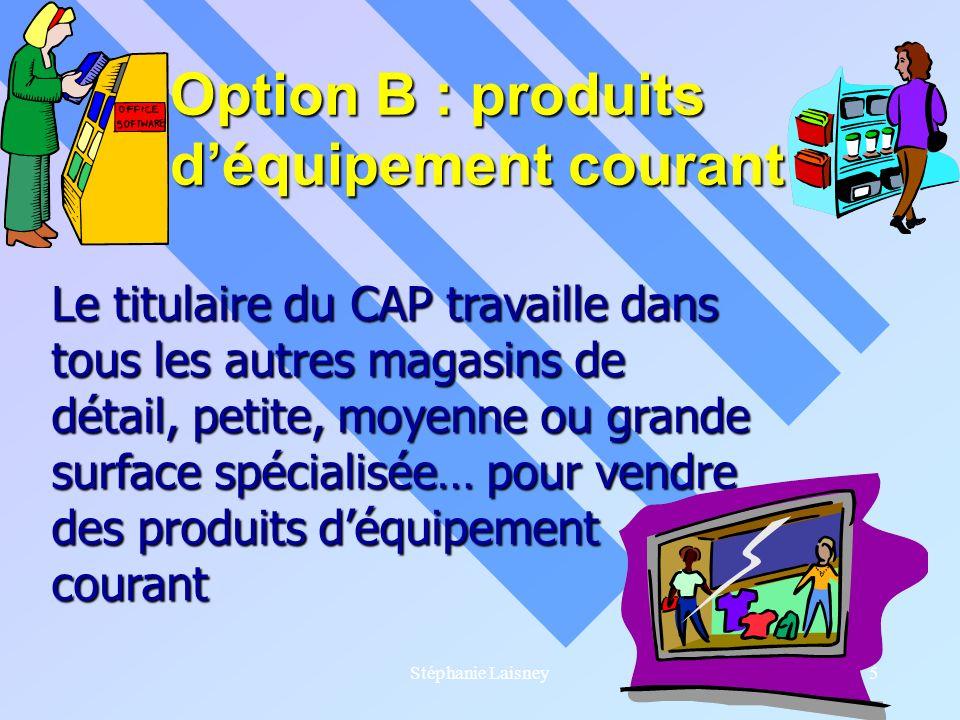 Option B : produits d'équipement courant
