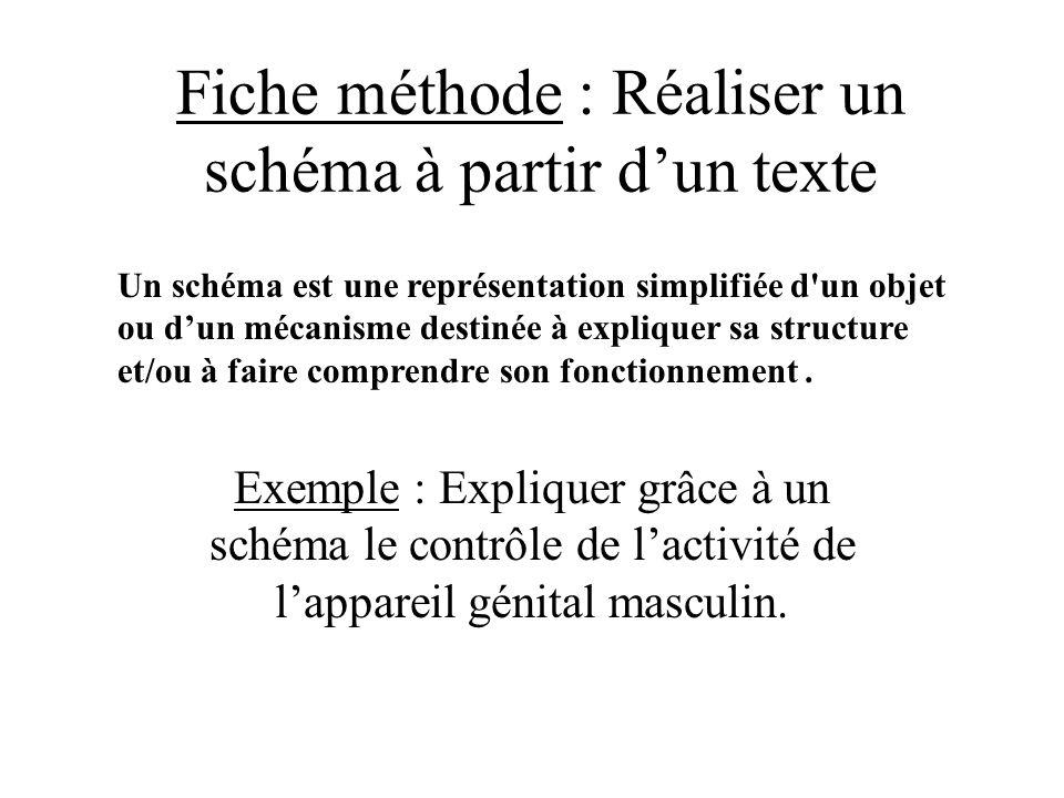 Fiche méthode : Réaliser un schéma à partir d'un texte