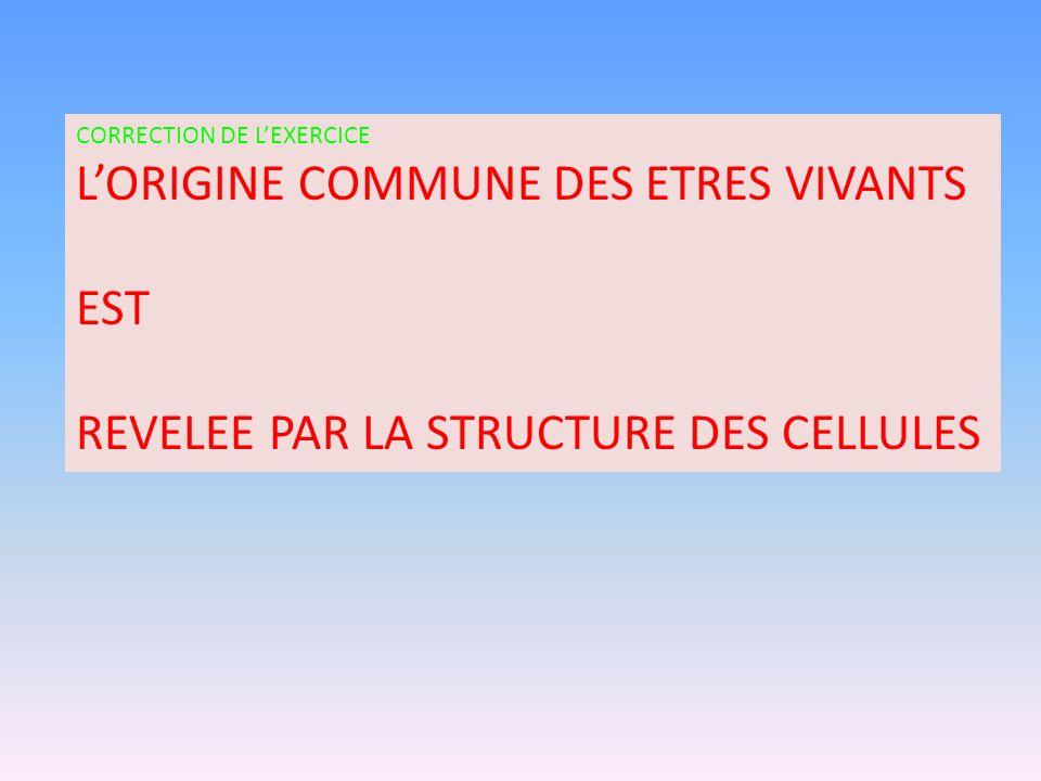 L'ORIGINE COMMUNE DES ETRES VIVANTS EST