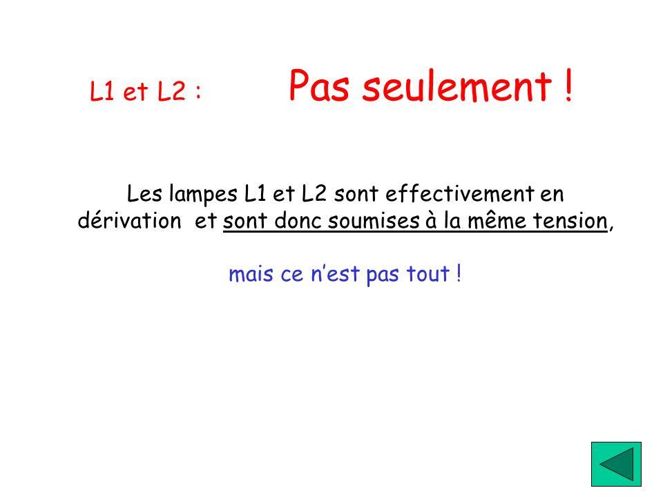 L1 et L2 : Pas seulement !Les lampes L1 et L2 sont effectivement en dérivation et sont donc soumises à la même tension,