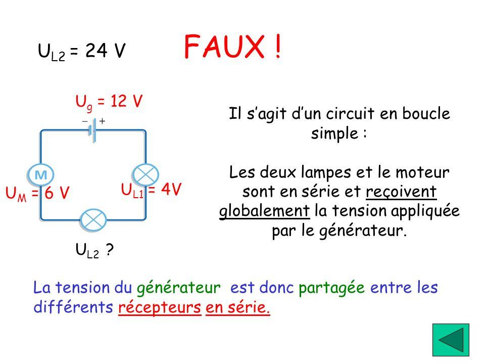 Il s'agit d'un circuit en boucle simple :