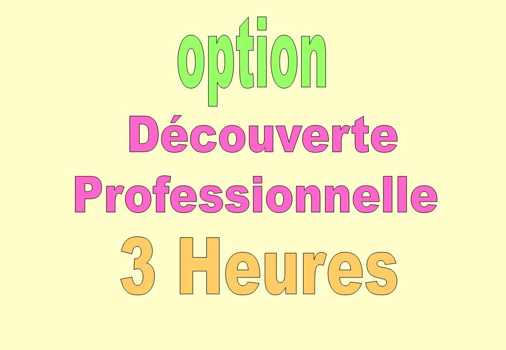 option Découverte Professionnelle 3 Heures