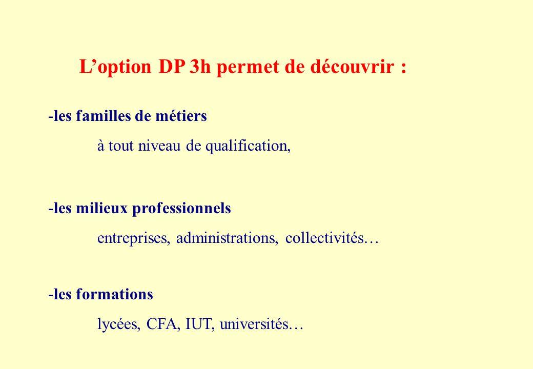 L'option DP 3h permet de découvrir :