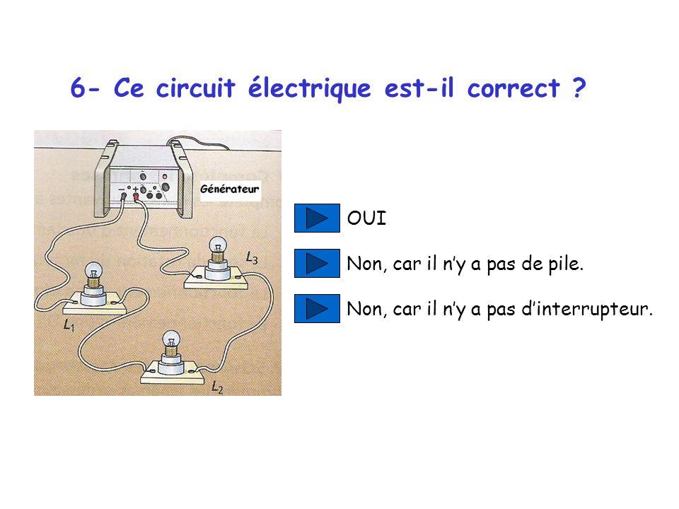 6- Ce circuit électrique est-il correct