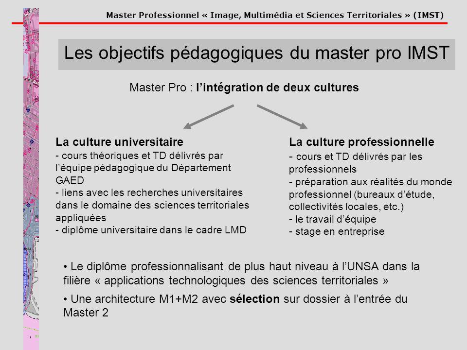 Les objectifs pédagogiques du master pro IMST