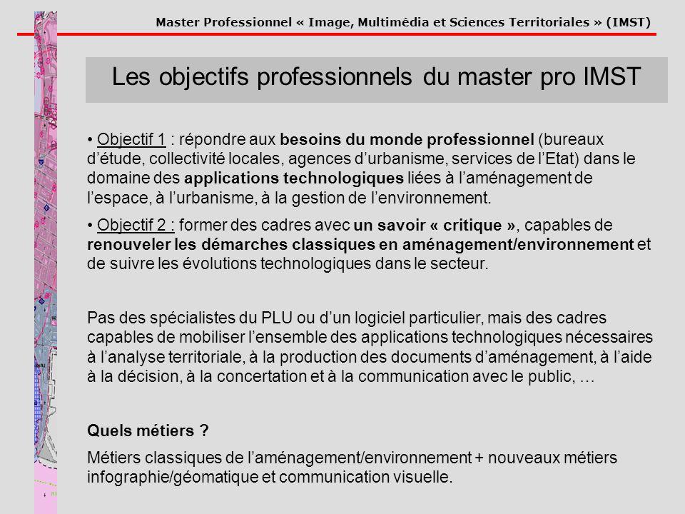 Les objectifs professionnels du master pro IMST