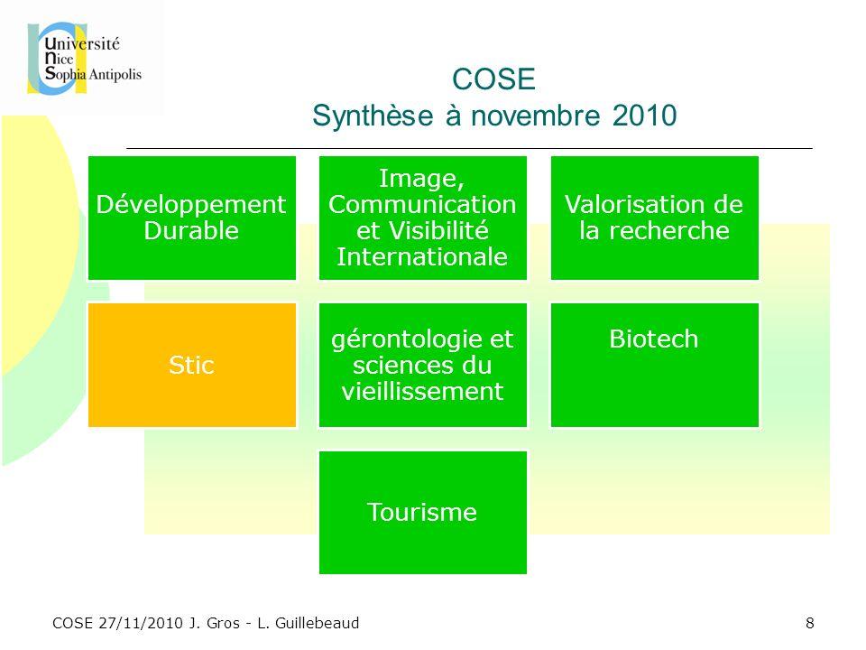 COSE Synthèse à novembre 2010