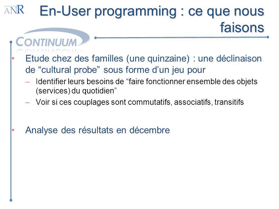 En-User programming : ce que nous faisons