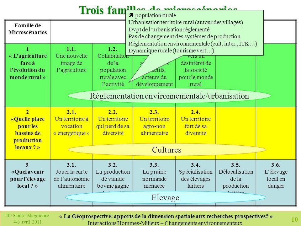 Trois familles de microscénarios